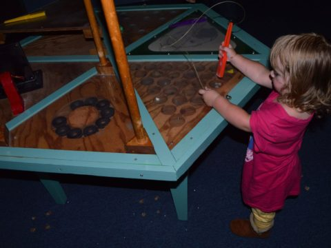 ACM Reciprocal Network – Association of Children's Museums